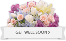 Send Get Well Flowers to Hollywood, FL, surrounding areas or nationwide.