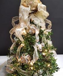 Angelic Boxwood Tree