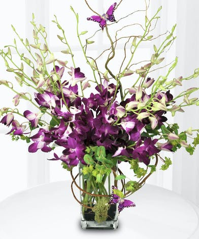 Purple dendrobium orchids, curly willow and two butterfly decorations in a clear glass vase.