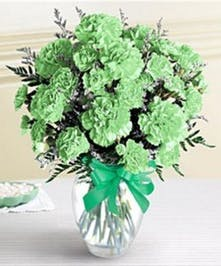 Green carnations arranged in a clear glass vase adorned with a green ribbon.