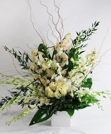 All-white arrangement of orchids and roses in a white cube vase with greenery.