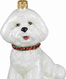 Pet Set Diva Dog Bichon