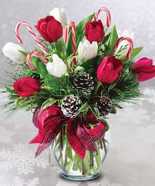 Christmas tulip bouquet of red and white blooms, pine cones and candy canes.