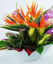 A stunning senterpiece filled with birds of paradise, orchids, protea and tropical foliages