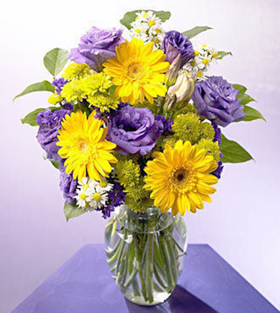 Festive Jamboree Yellow Purple Flower Arrangement Hollywood Fl