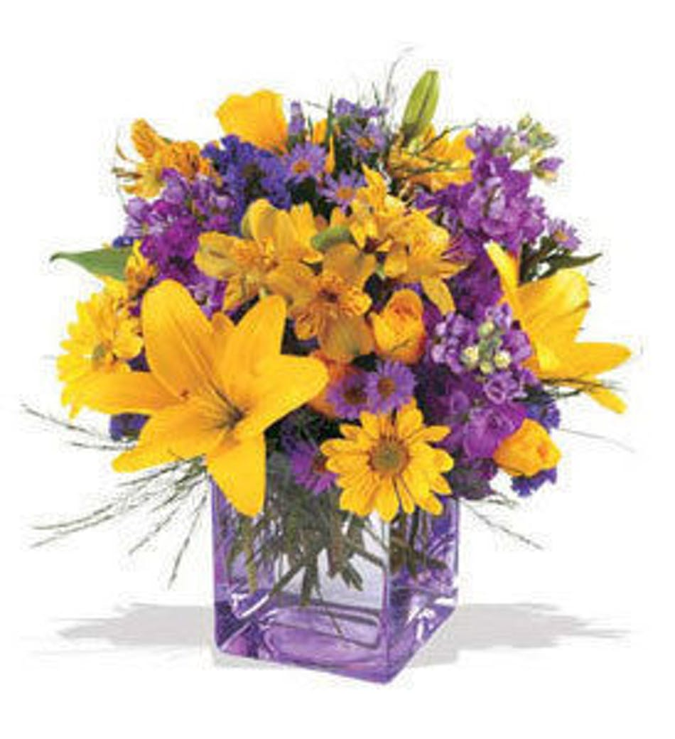 Hollywood fl flower delivery morning sunrise als florist yellow lilies and purple flowers in a purple cube vase izmirmasajfo