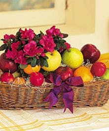 Fresh fruit and a flowering azalea in an oval basket.