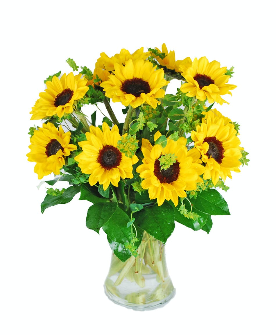 Bunch of suns in a clear glass vase.