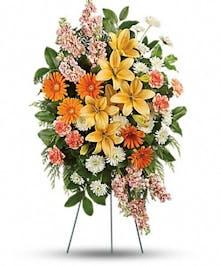 Treasured Lilies