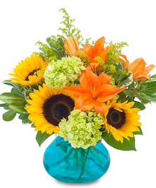 Sunflower Arrangement Delivery. Bright Fall Blooms with Sunflowers & Lilies arranged in a vibrant blue glass vase.