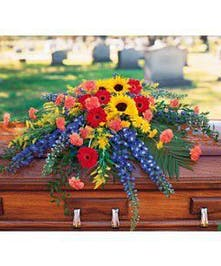 Vibrant casket spray with sunflowers, blue delphimium, orange carnations and red gerberas.