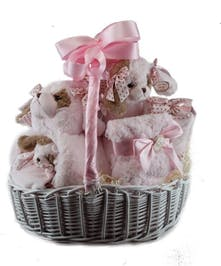 A beautiful basket filled with baby girl items.