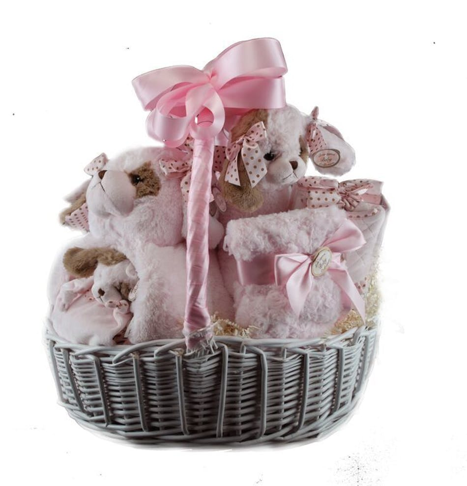 Girl gift basket delivery south florida florist baby girl gift basket delivery south florida florist negle Choice Image