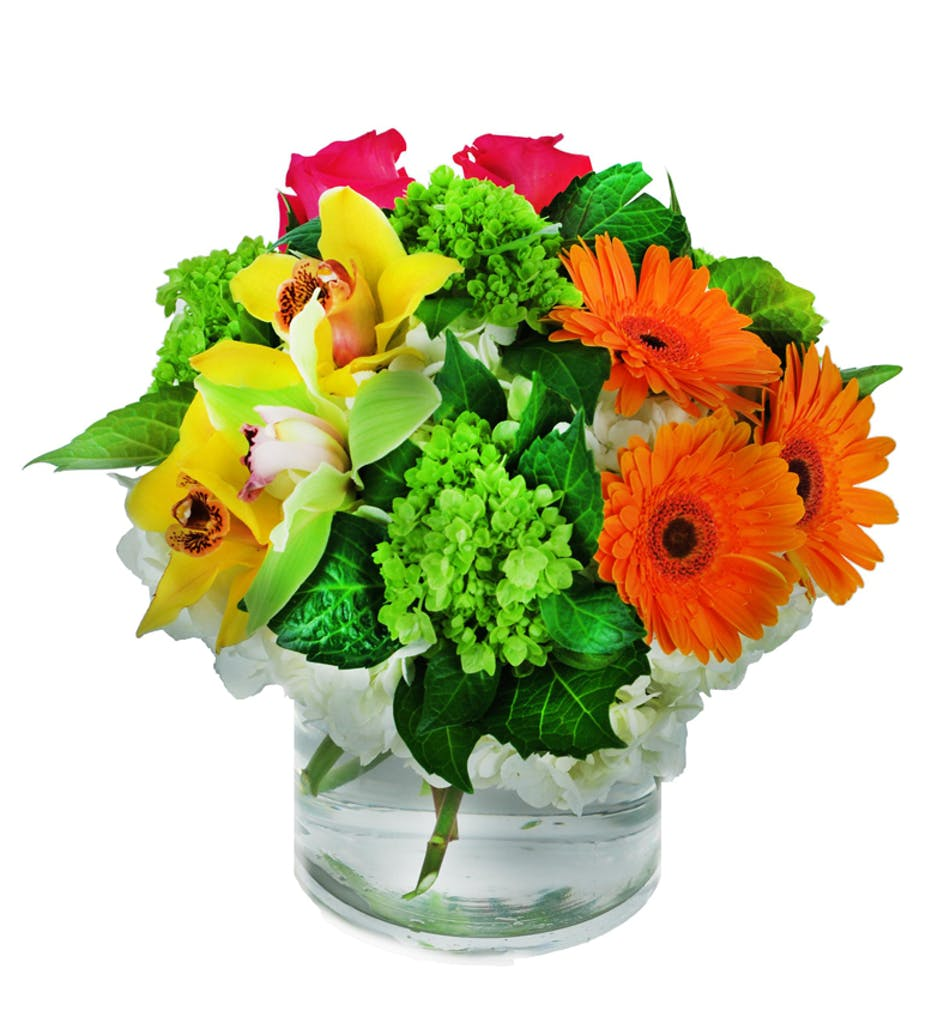 Our planets pretties flowers for earth day als florist citrus flower hollywood fl als florist izmirmasajfo