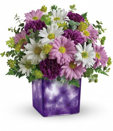 Lavender and white daisies, roses, and greenery in a purple cube vase with pressed violet motif.