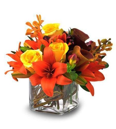 Autumn Glory Hollywood (FL) Flower Delivery by Al's Florist