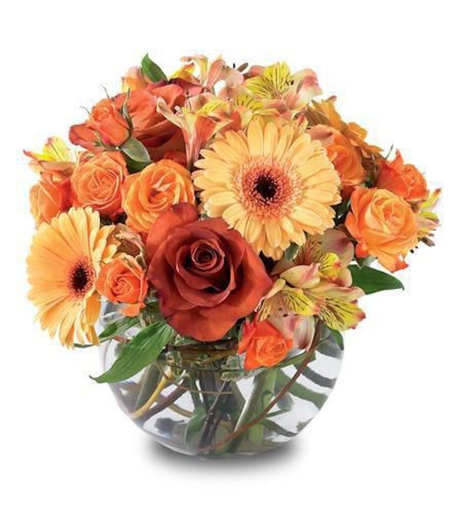 Autumn Elegance Hollywood (FL) Flower Delivery by Al's Florist