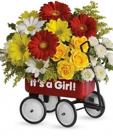 Yelllow roses, red miniature gerberas and Matsumoto asters, white and yellow daisy spray chrysanthemums, white button spray chrysanthemums and solidago arranged in a wagon