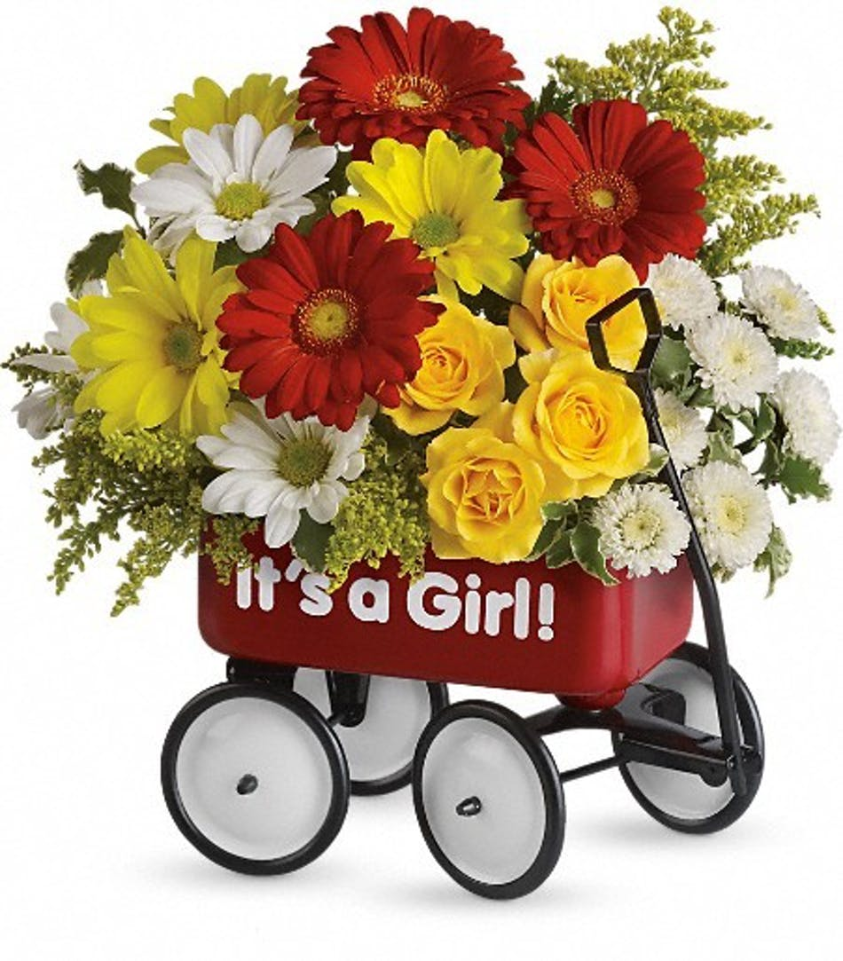 Baby girl gifts flower wagon delivery als florist yelllow roses red miniature gerberas and matsumoto asters white and yellow daisy spray chrysanthemums negle Choice Image