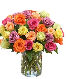Assorted Colored Roses Hollywood (FL) Same-day Delivery