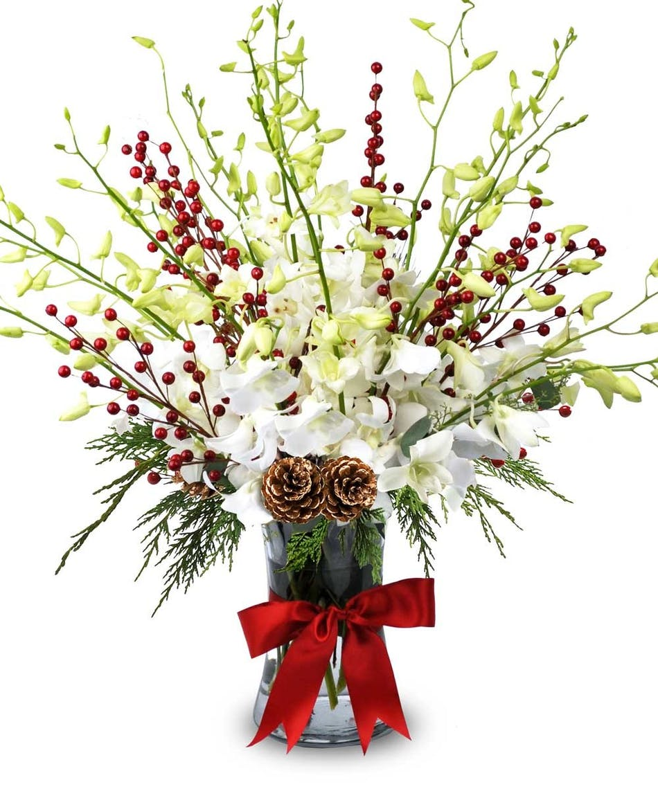 White orchids, berries, Christmas greens & pine cones in a vase tied with red ribbon.
