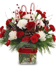 Red & white carnations, pinecones and greens and topped off with candy canes in a clear glass cube vase with red ribbon.