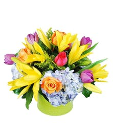 Yellow, pink, orange, purple and blue flowers in a lime green vase.