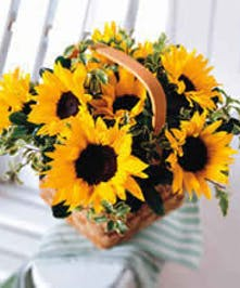 Woven basket filled with sunflowers and greenery.