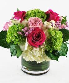 Lime Green Hydrangea, Rose Arrangement - Hollywood (FL) Florist