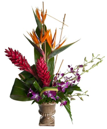 Tropical Flower Bouquet Hollywood Fl Same Day Delivery Als Florist